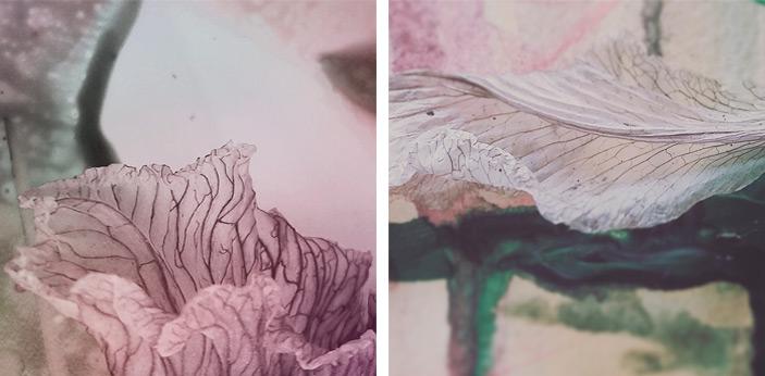 3-rokins-flors