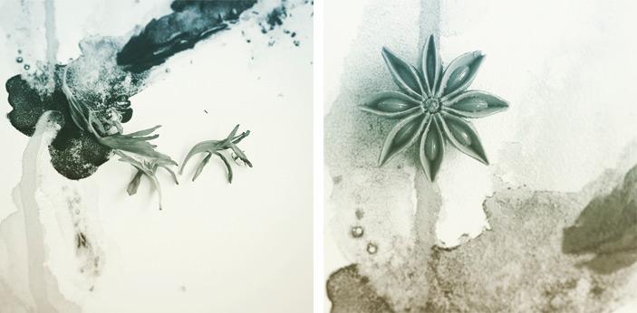 4-rokins-flors